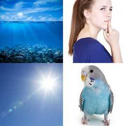 4 fotos 1 palavra 4 letras solução AZUL